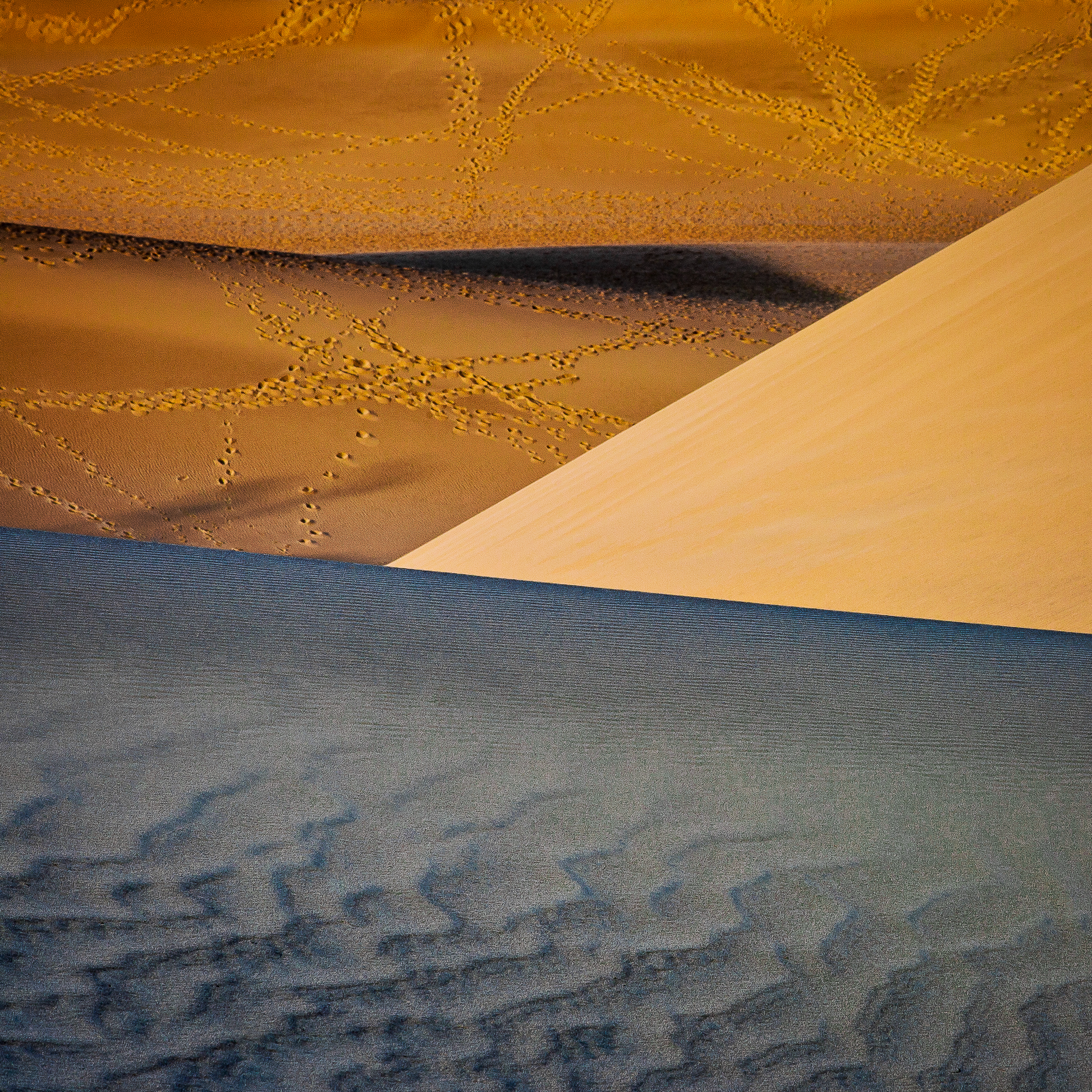 Dunes 4, Light and Shadow