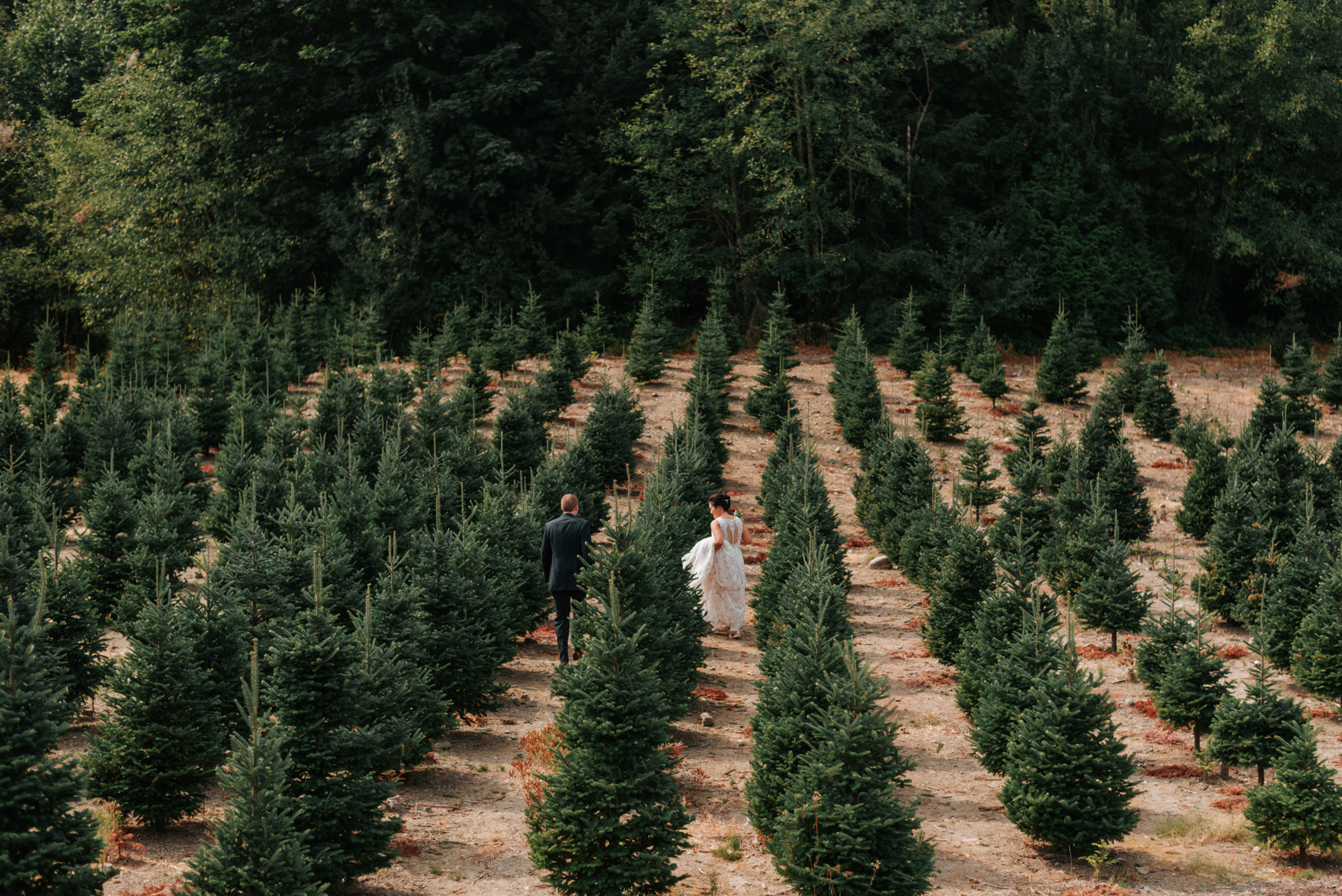 Trinity Tree Farm - Issaquah, WAThis rustic tree farm is gorgeous year-round for both indoor and outdoor weddings.Great getting ready spaces for both parties, large property for portraits, beautiful indoor space if weather doesn't permit outdoor events.