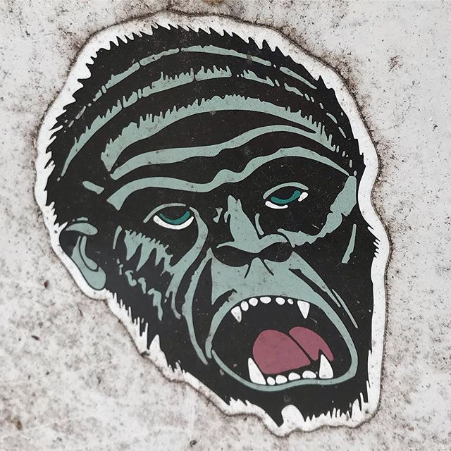 Happy Monday, monsters... tag the artist if you know. . . . #monday #monster #sticker #streetart #chicago #ape #picoftheday