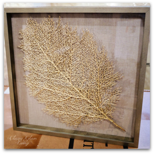 DIY Floating Sea Fan in IKEA RIBBA Deep Frame | Classy Glam Living