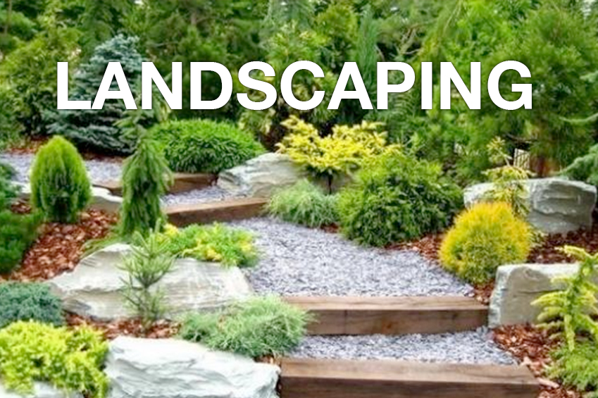 - Planting   - Tree Trimming - Extra Cleanup - Sprinkler System Installation