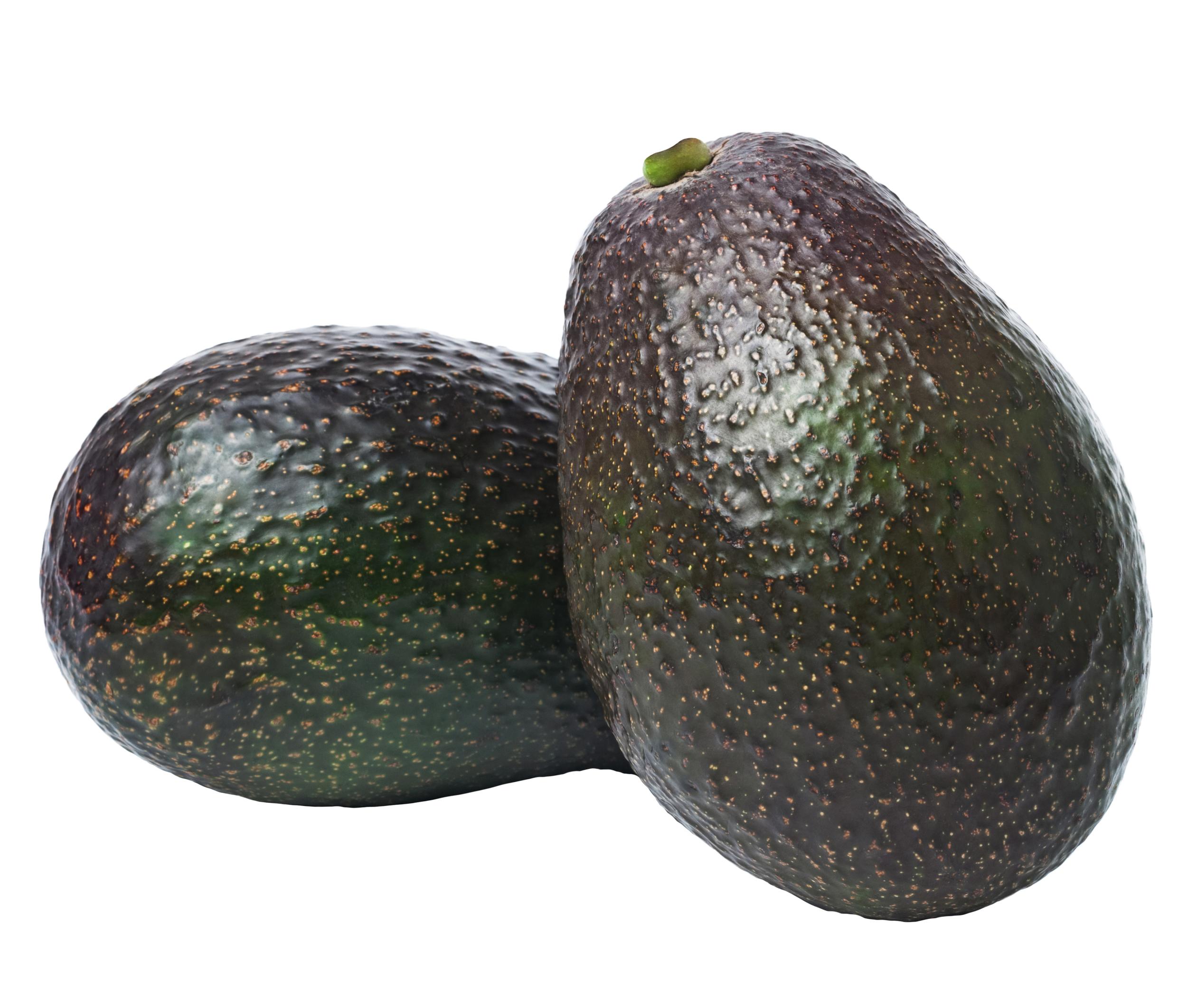 Avocado -