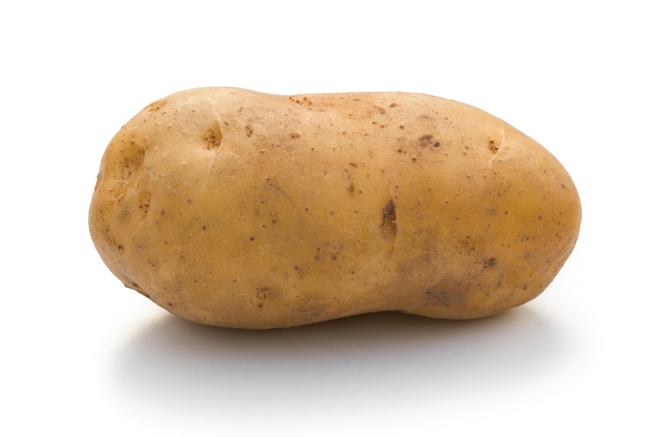 Potato -