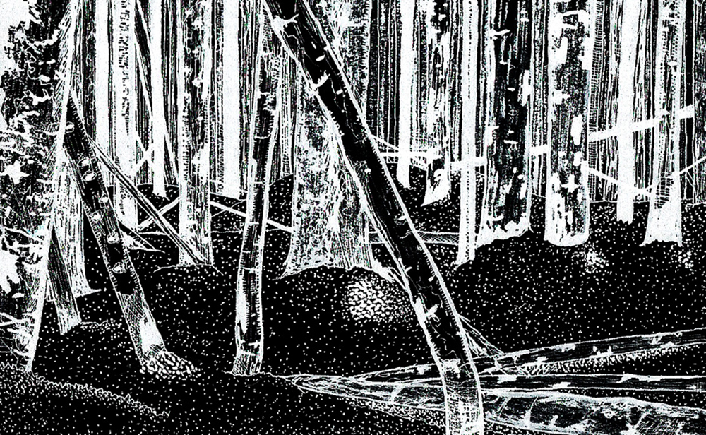 """About teenage..."" digital slide from original ink drawing, 2012"