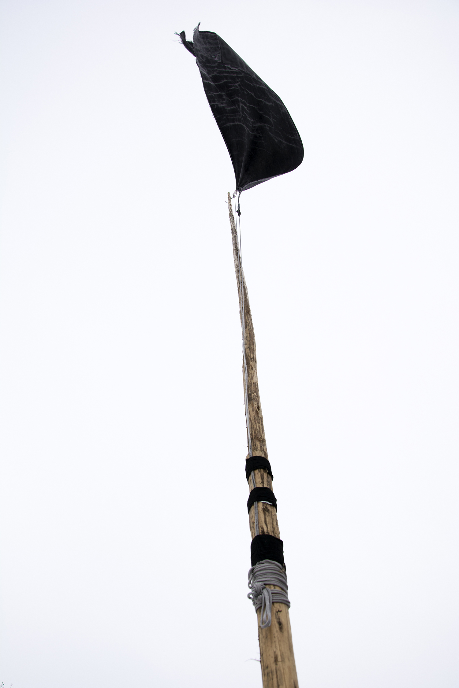 """""""black flag (tantramar)"""" (detail) white-spruce, canvas, paint, nails, rope and twine, 2014"""