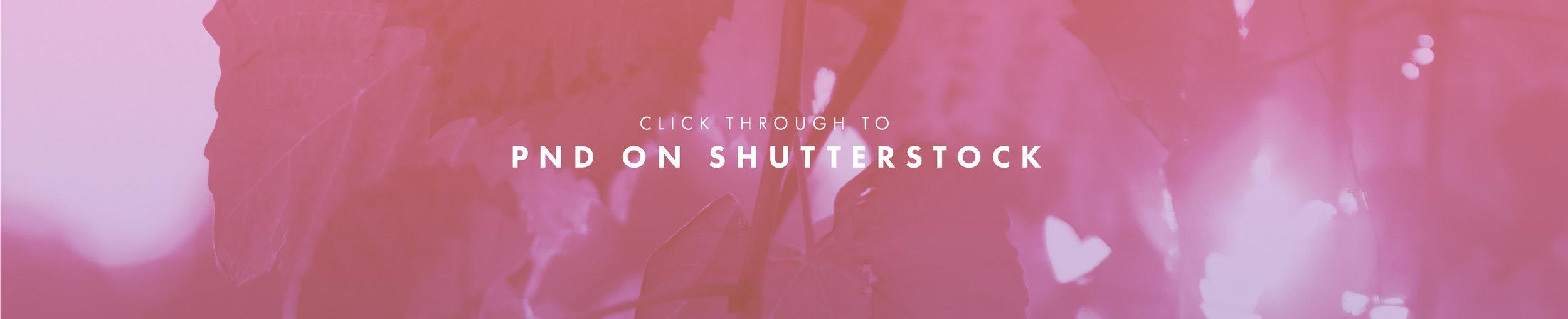 Shutterstock button