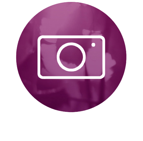 pnd photography icon.jpg