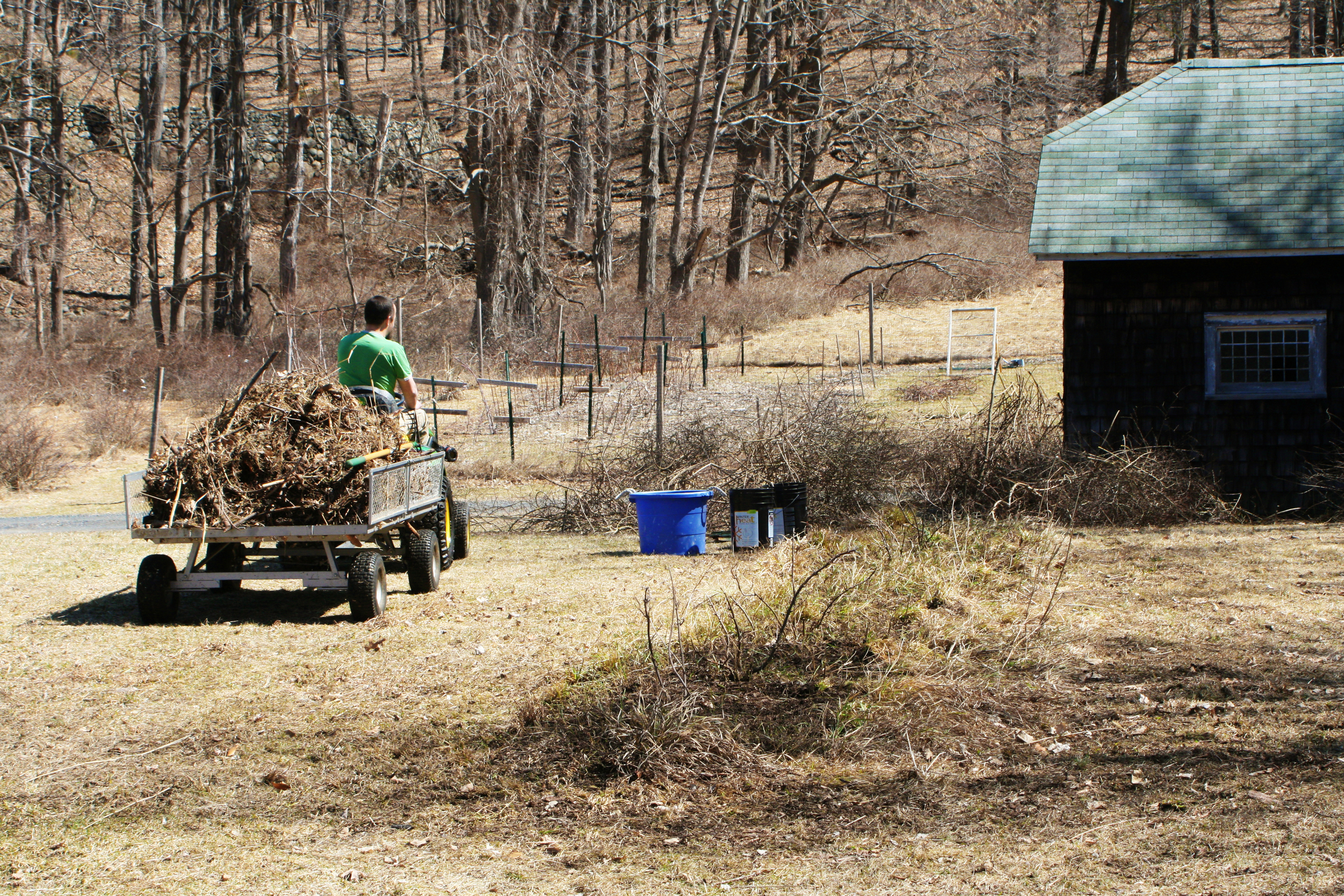 Hauling the debris to the compost pile.