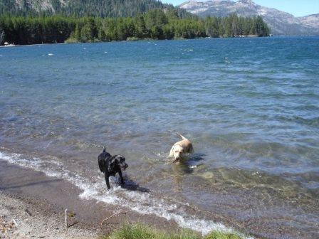 Donner Lake, 2004-2006.jpg