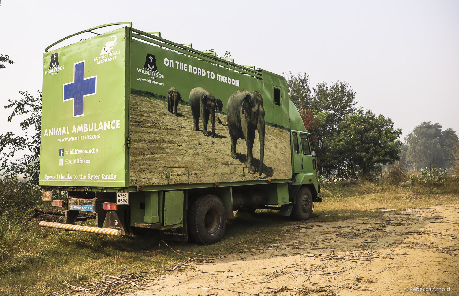 WildlifeSOS has the only elephant ambulance in all of India. They transport elephants from all over the country.