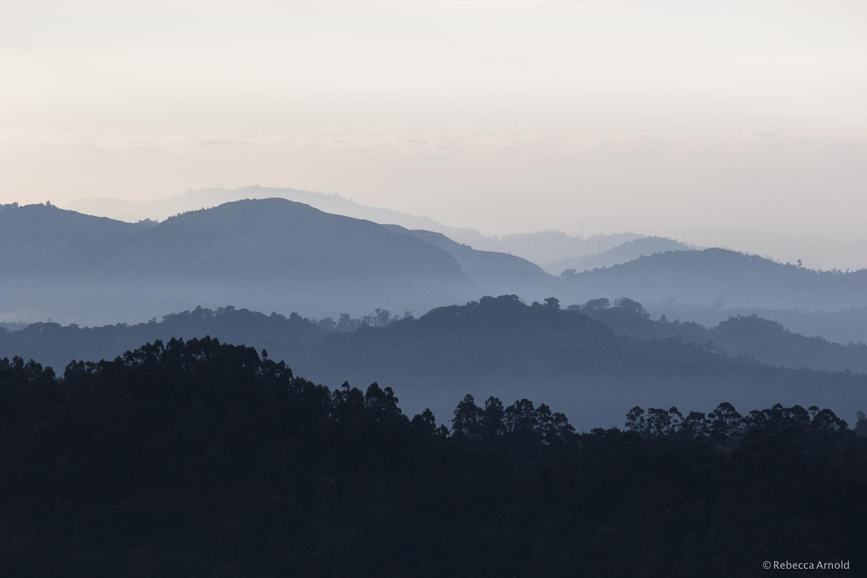 Munnar Sunrise, India