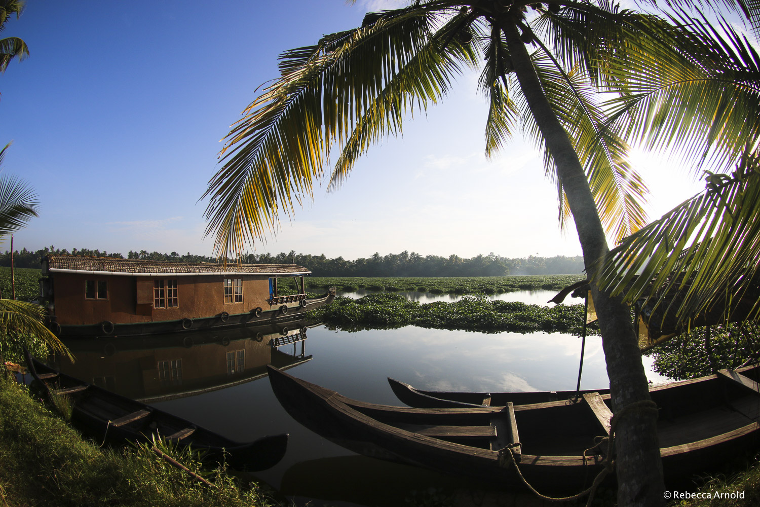 "Kerala Backwater Boats, India 2015  16"" x 24"" 