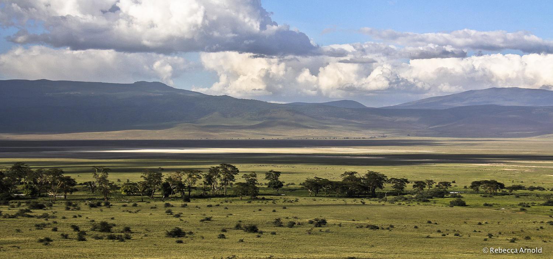 Ngorongoro Savannah, Tanzania  PURCHASE Archival Pigment Print
