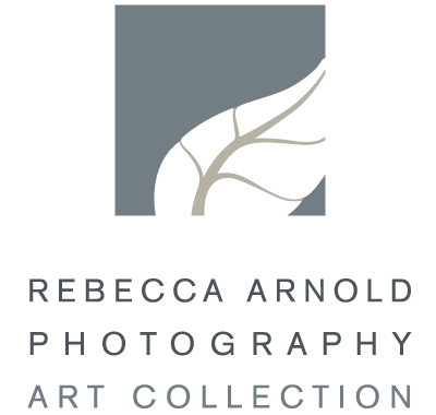 rebecca arnold photography art collection nature