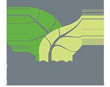 RAP_Spaces_®_logo_Double-Leaf_rgb_WEB_NoRA_sm.png