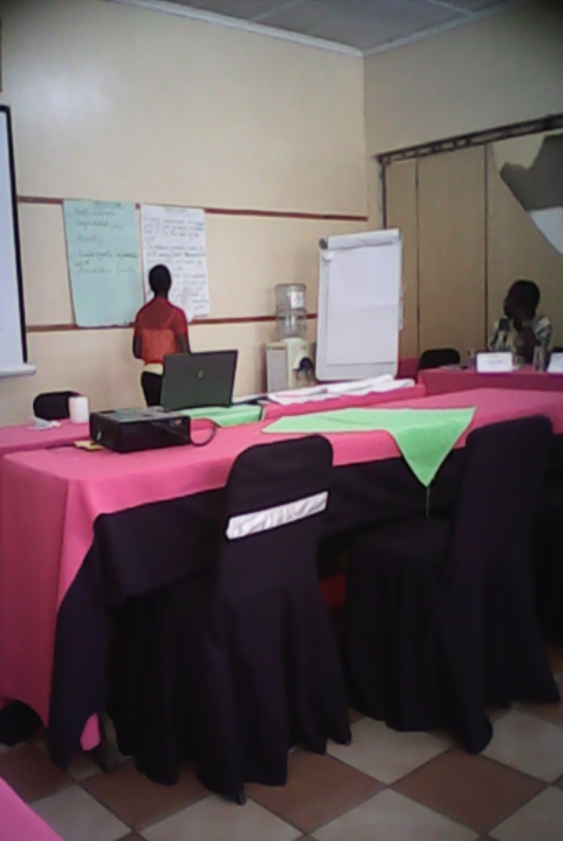 Cynthia from the CAM staff doing a presentation during the project design training