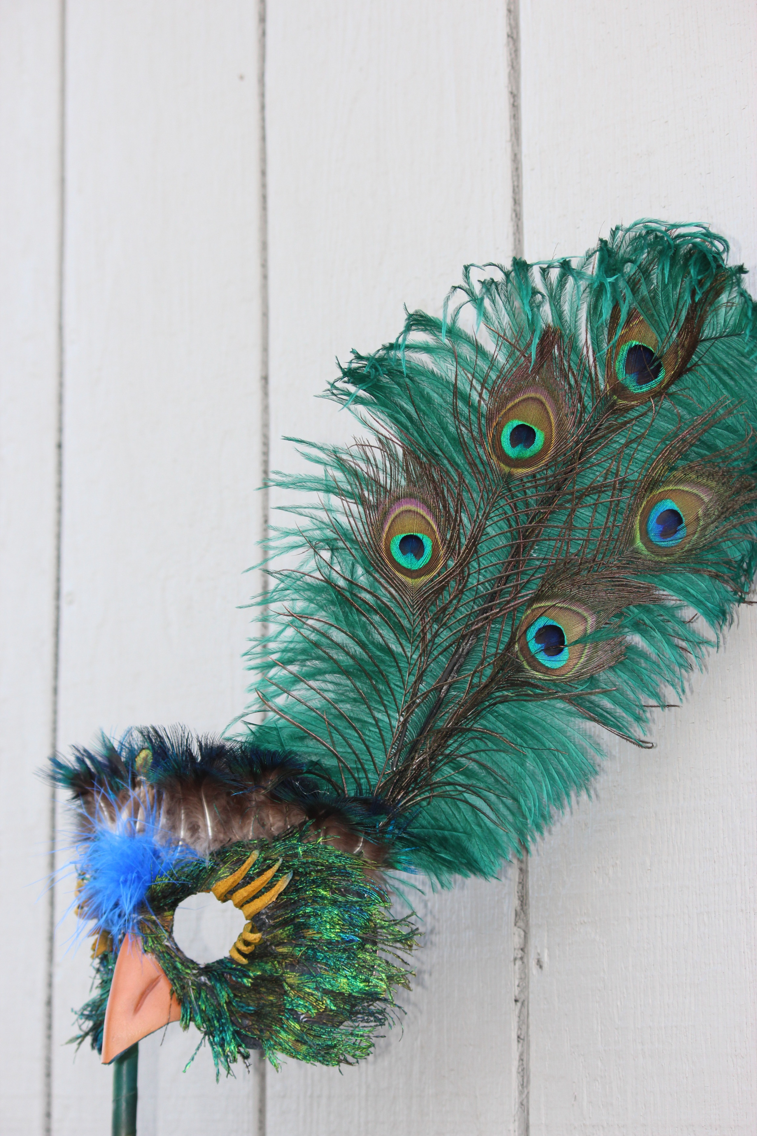 peacockdetail1