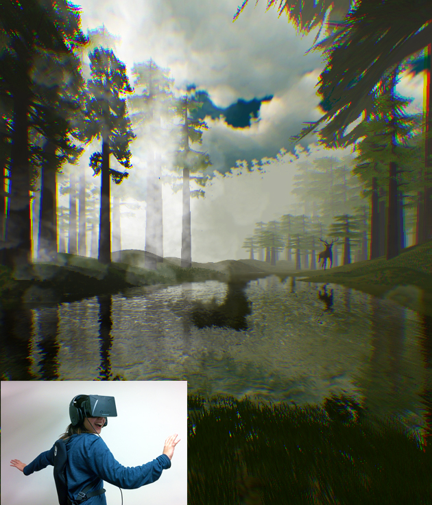 View from the perspective of the user equipped with VR gear.