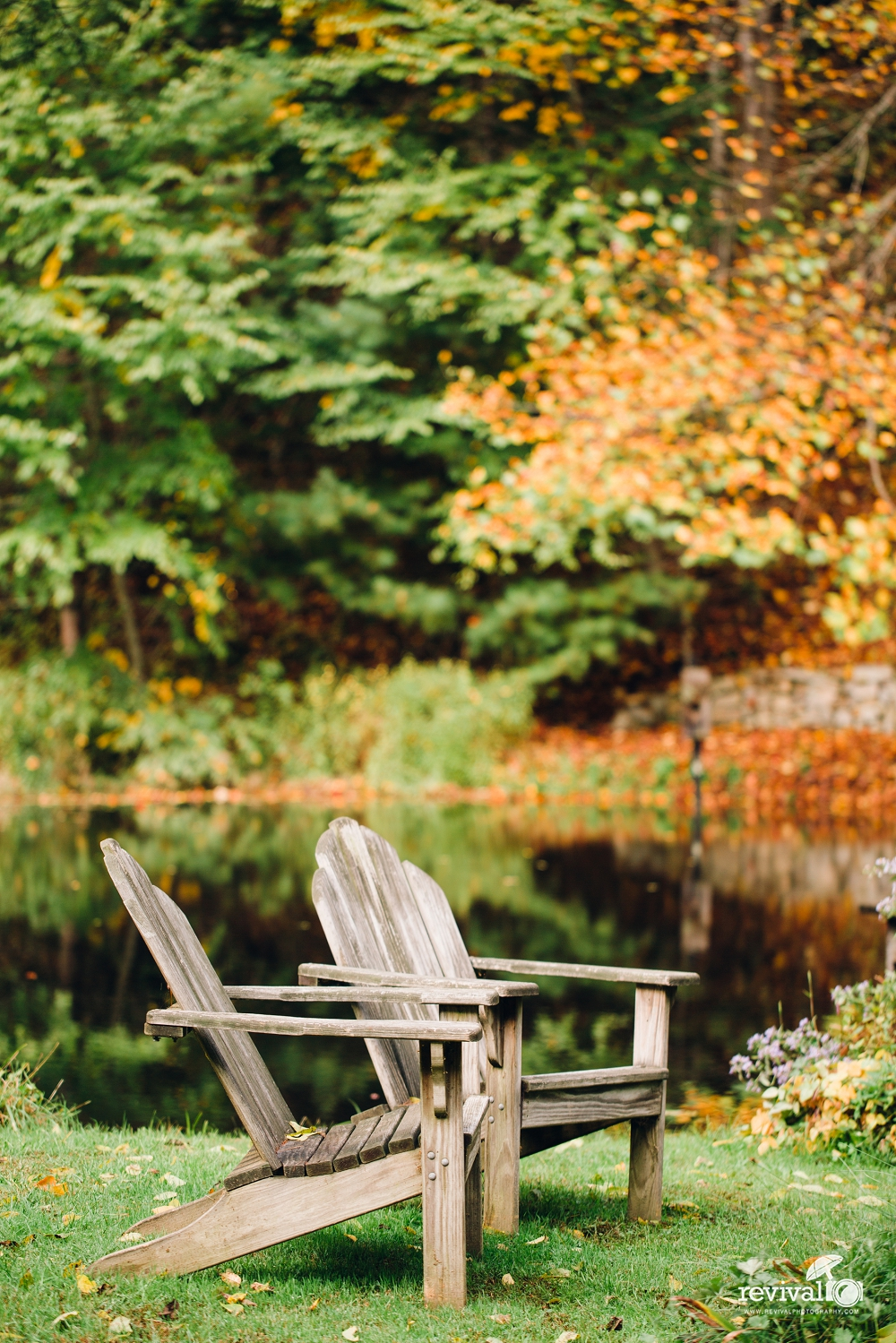 Having a destination wedding? Why not give the gift of R & R to your guests? Maybe a place where they can get away from it all, be out in nature, relax in rocking chairs, nearby nature trails and stunning natural beauty...