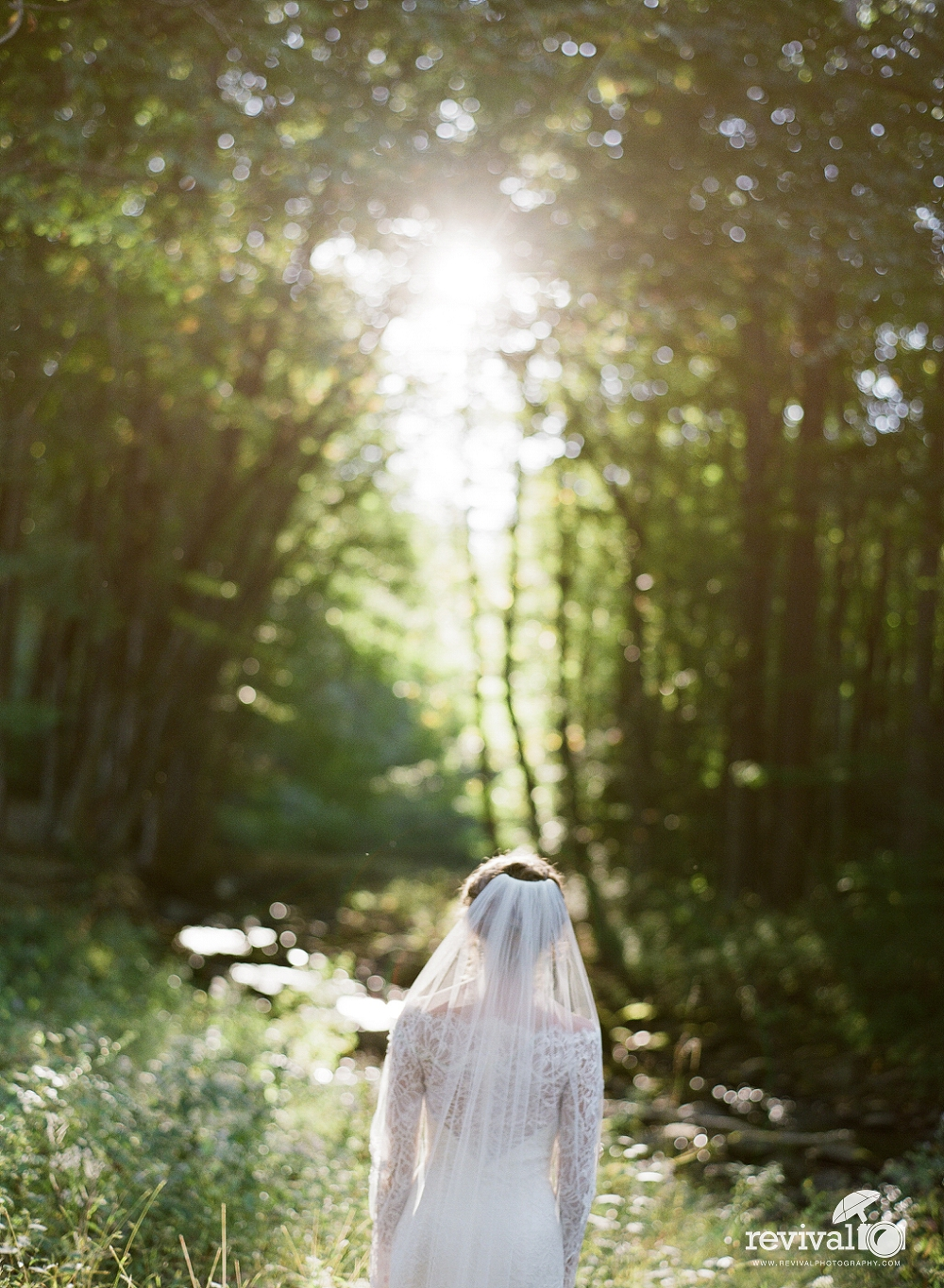 Kendra's Mountain Woodlands Bridal Session in Boone, NC Photography by Revival Photography www.revivalphotography.com