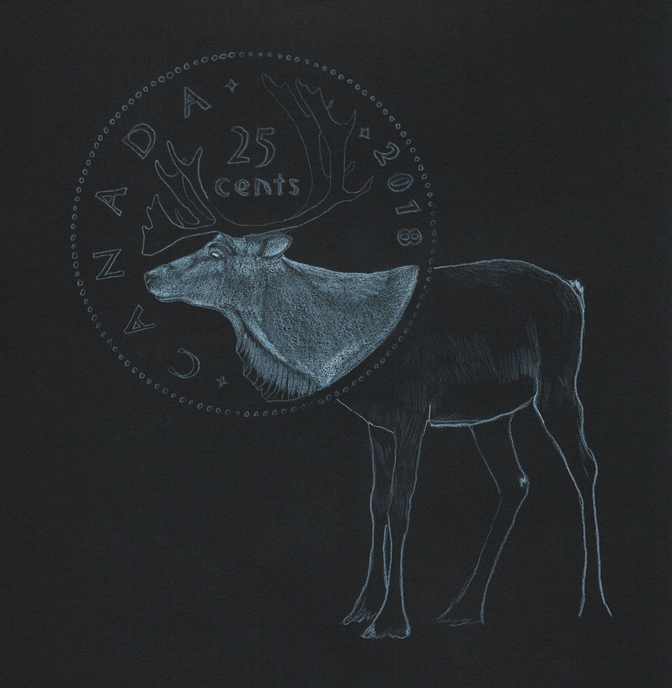 Sarah Ronald - caribou quarter on black.jpg