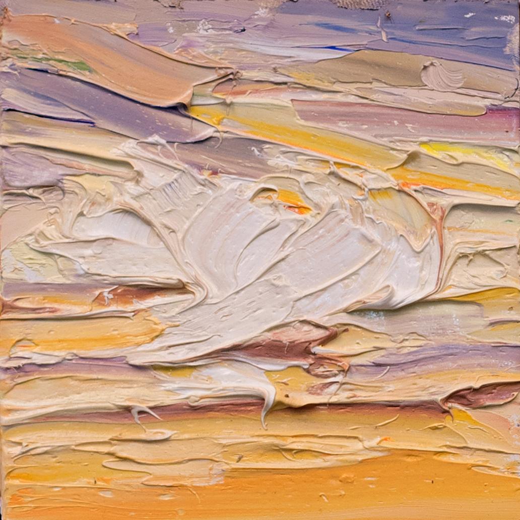 Sunset texture study