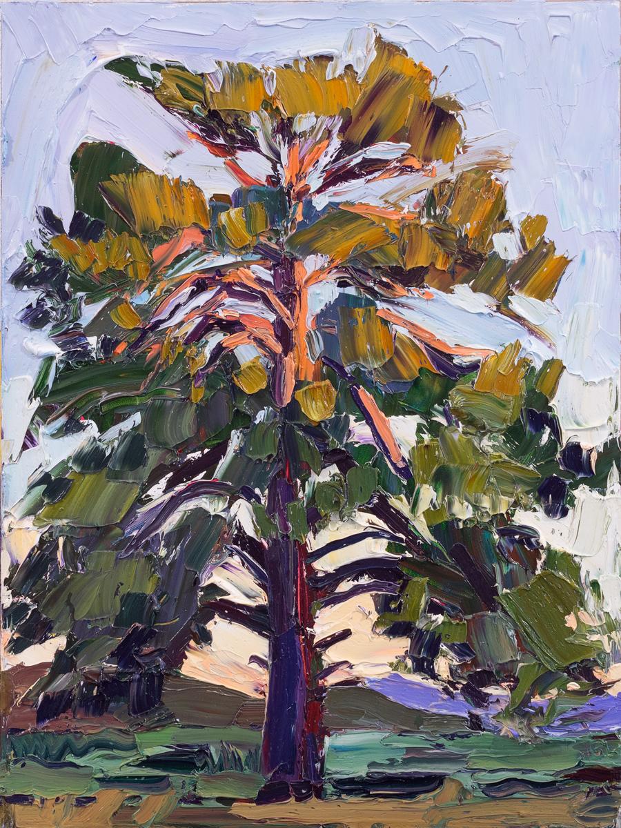 Lone Tree #3 - sundown