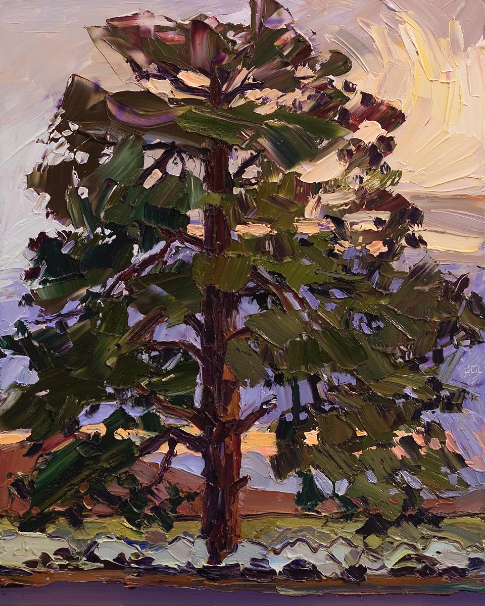 Lone Tree #6 - stormy sunset