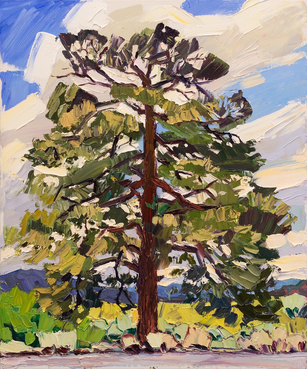 Lone Tree #8 - eagle's nest