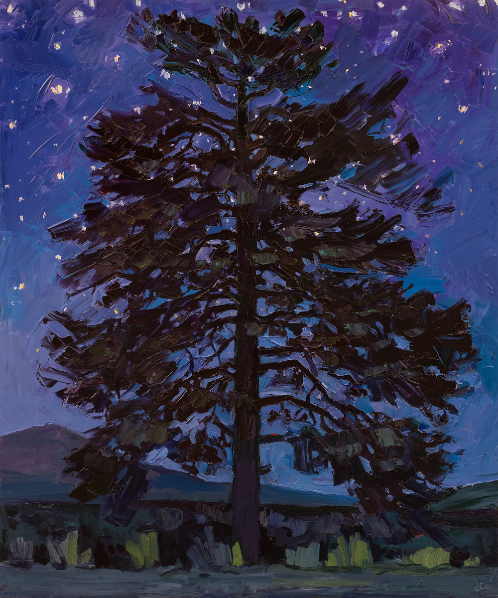 Lone Tree #11 - Nocturne