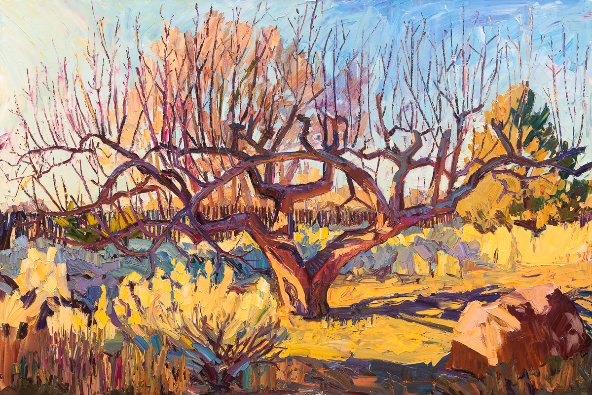 "The old apple tree, 48"" x 72"", painted on location in Taos, NM."