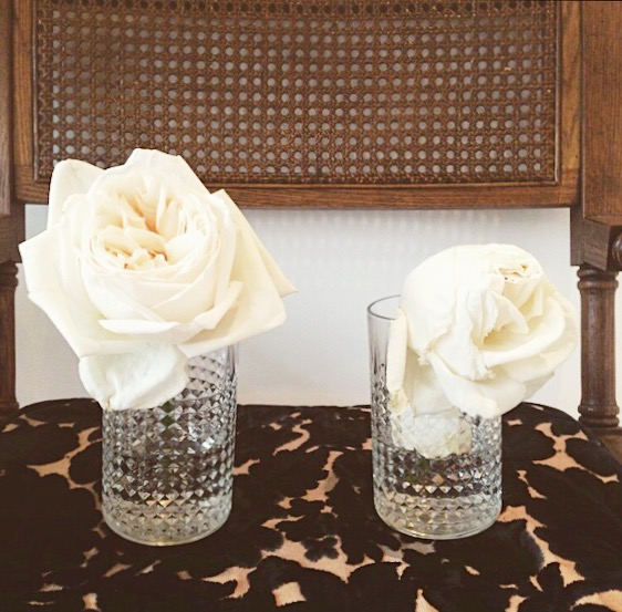 Flower Food Experiment (January 2015) by OLFCO. White O'Hara Garden Roses In Water with Florallife (LEFT) and in Water Only (RIGHT) after 9 Days.