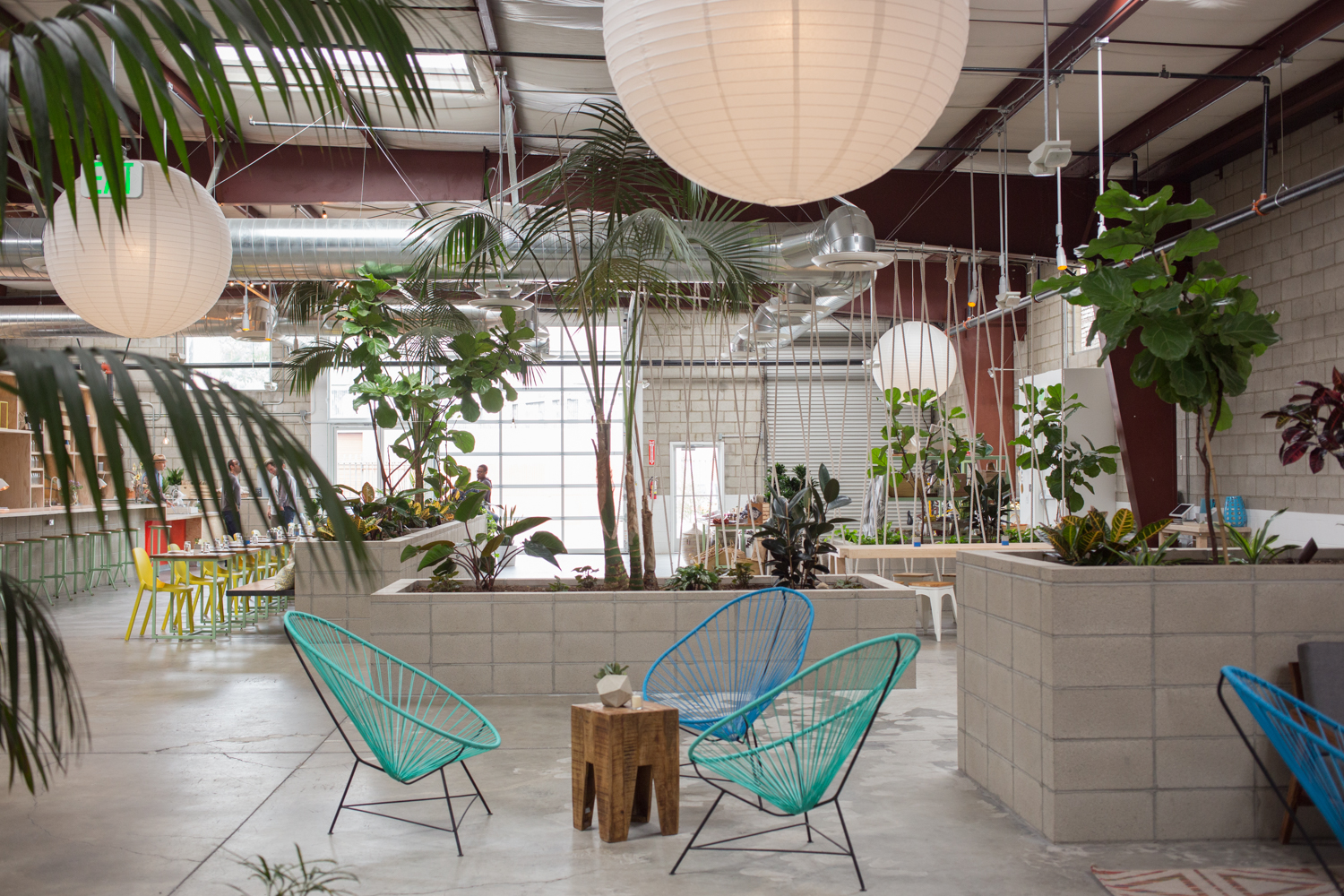 """Love how much light floods into the open space. The greens definitely add to the """"urban oasis"""" feel."""