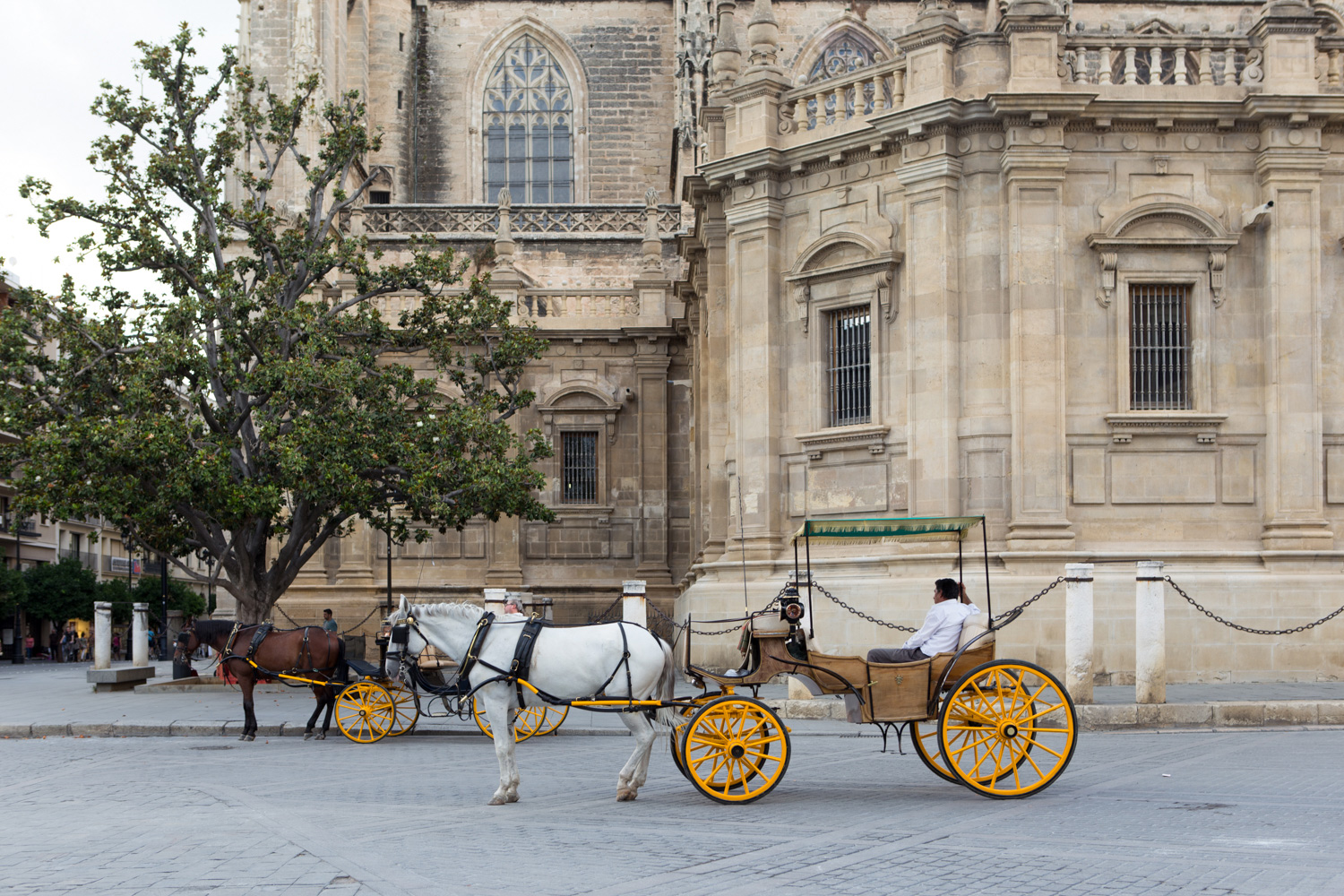An old-fashioned carriage ride- one of the ways to take in the sights of historic Seville