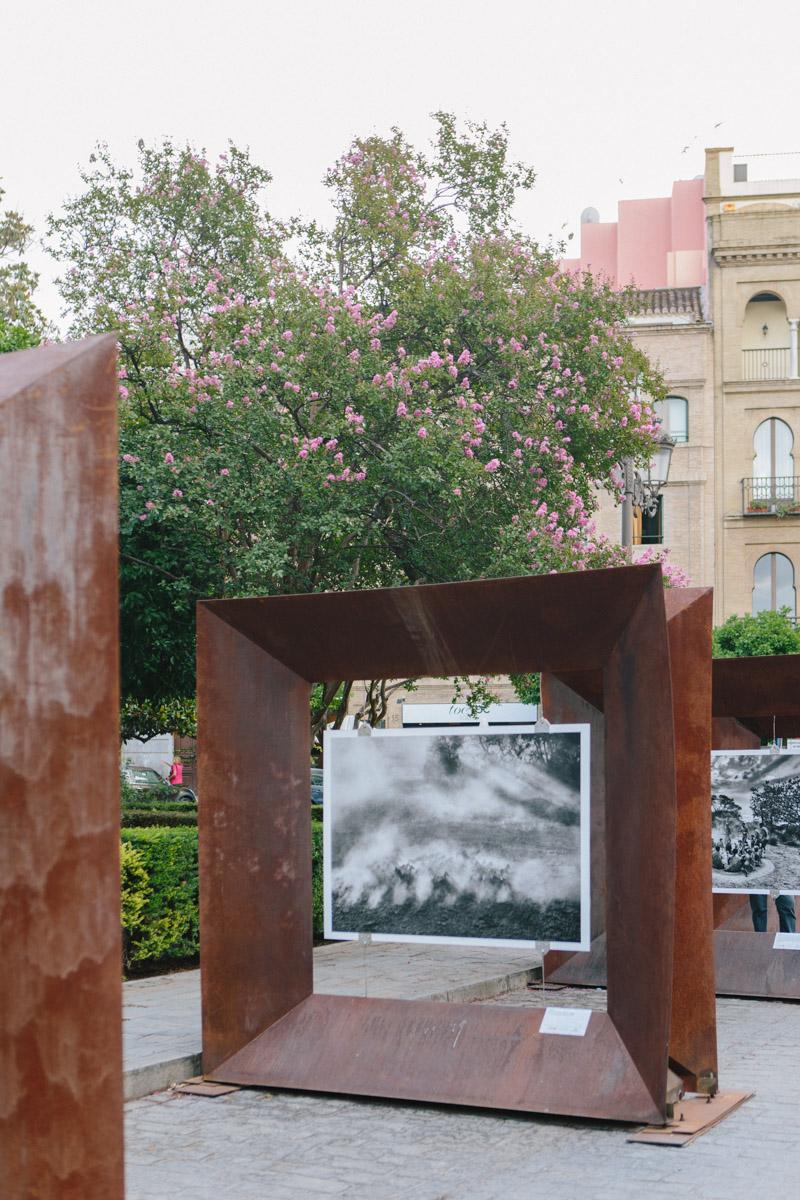 A public installation of Sebastião Salgado's photographs near the Seville Cathedral