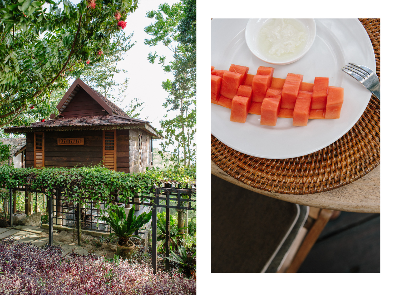 malihom-bungalow-papaya-yogurt-breakfast