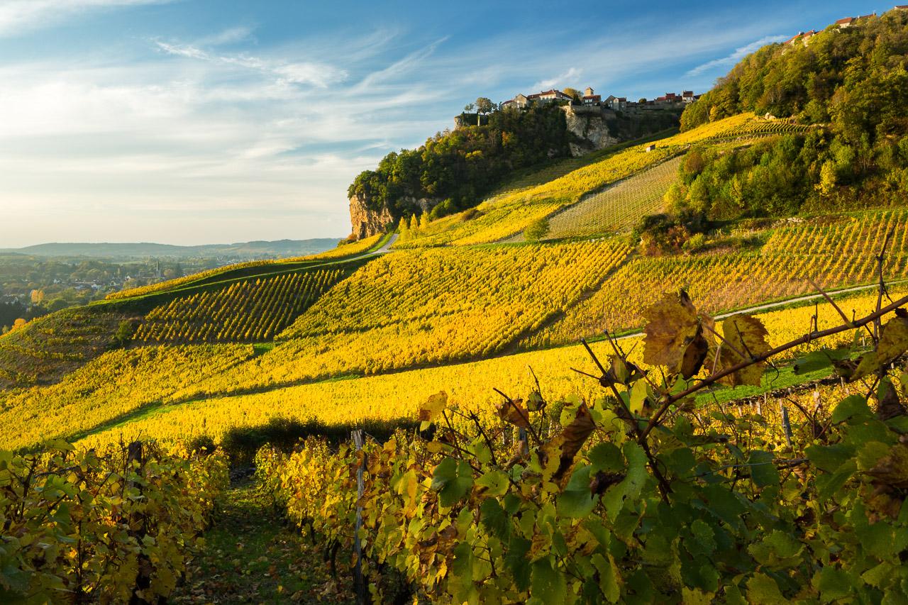 Vignoble de Château-Chalon
