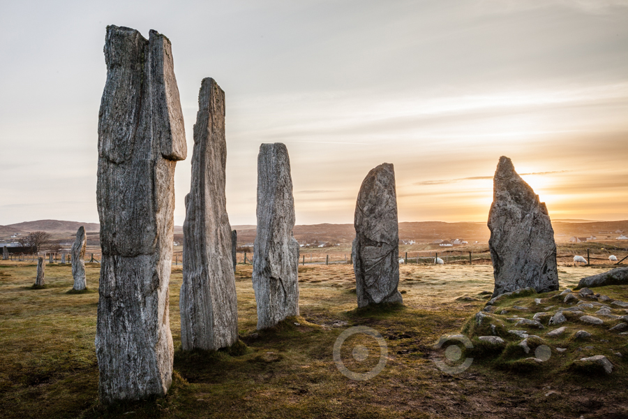 Callanish_MG_0246.jpg