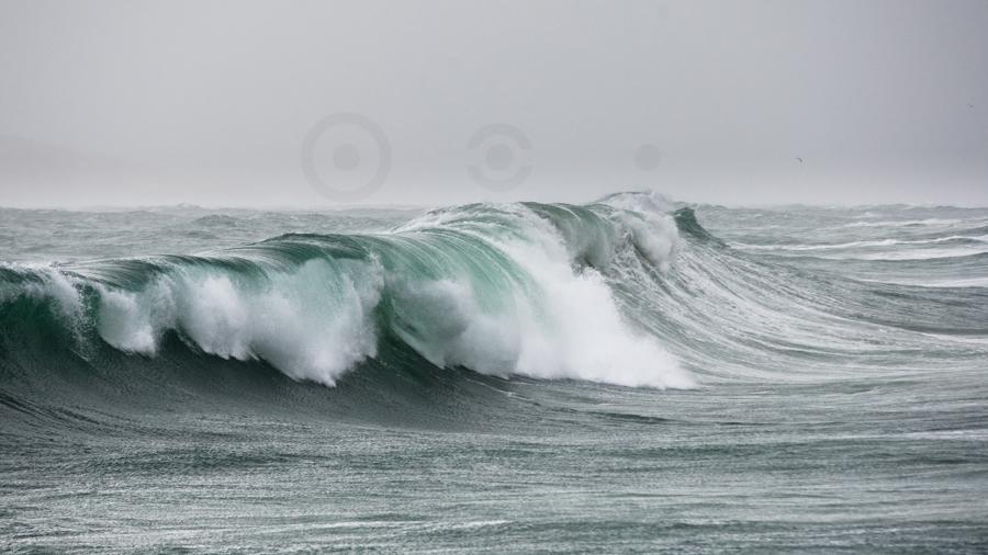 wave 9H8J1007.jpg