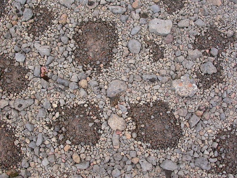 patterned-ground-12[5].jpg