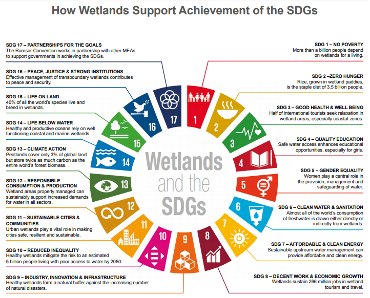 wetlands-and-SDGs.png