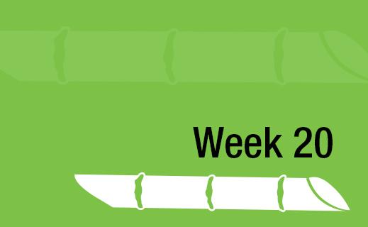 Week 20.jpg