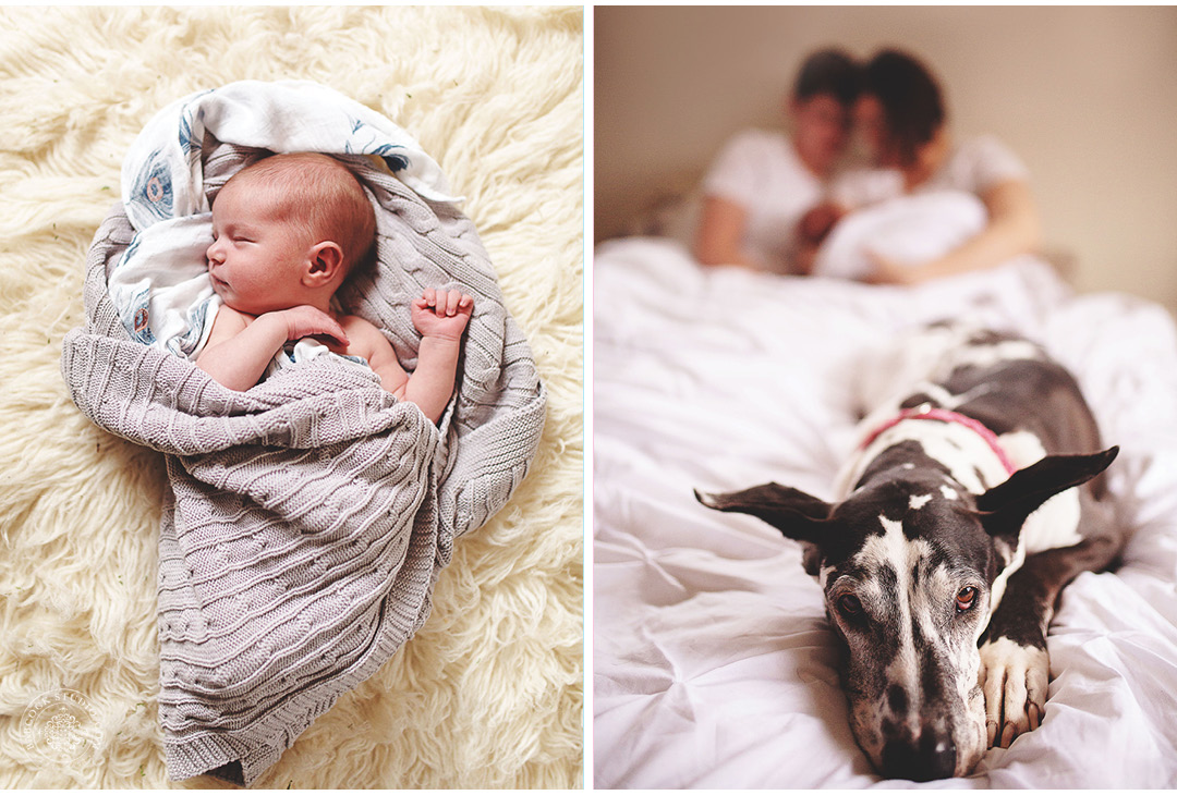 etta-dayton-newborn-family-photographer-7.jpg