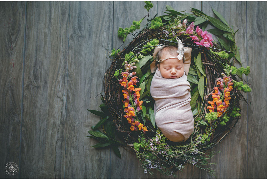 ellie-newborn-baby-photographer-cincinnati-ohio-.jpg