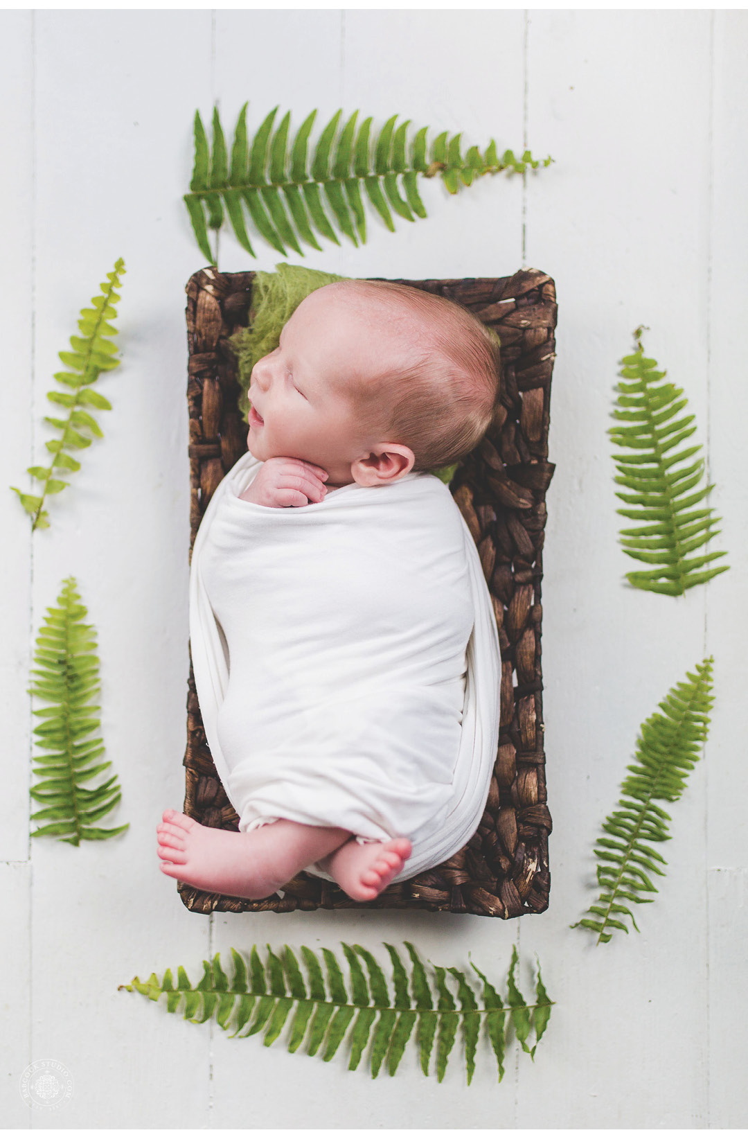 hollencampNB-newborn-photographer-dayton-ohio-.jpg