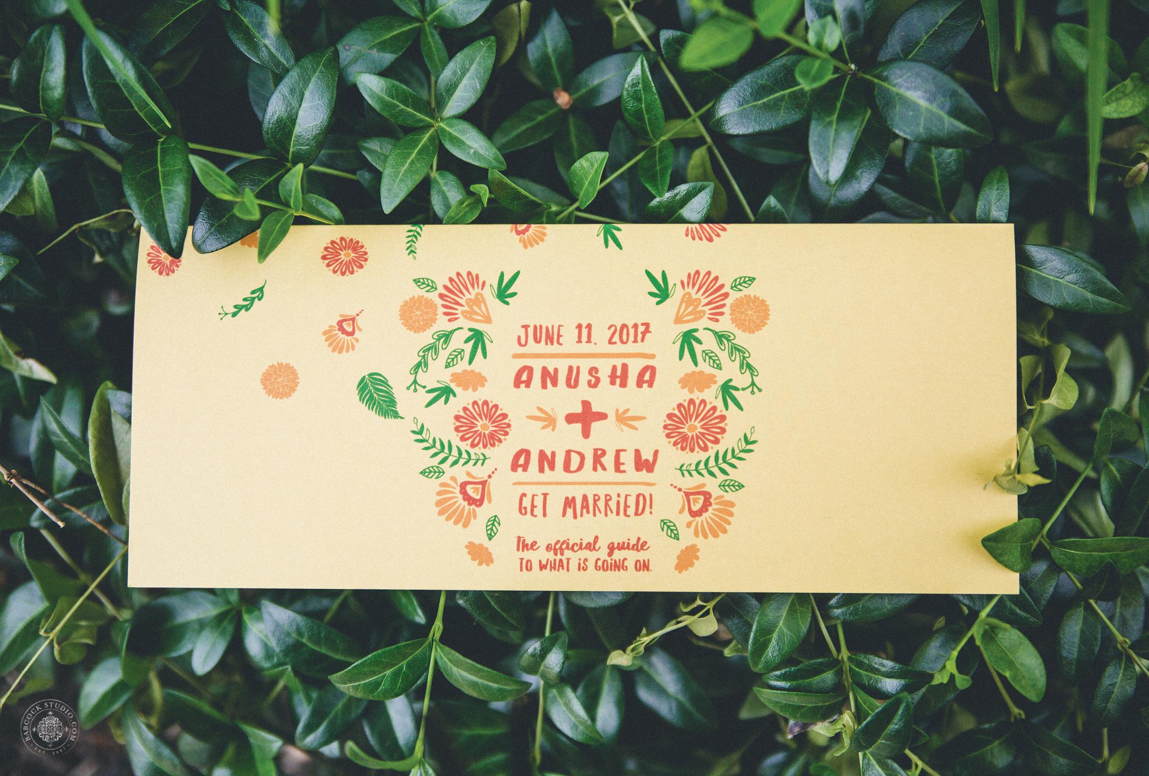 2anusha-andrew-indian-columbus-wedding-photographer-dayton-ohio-.jpg