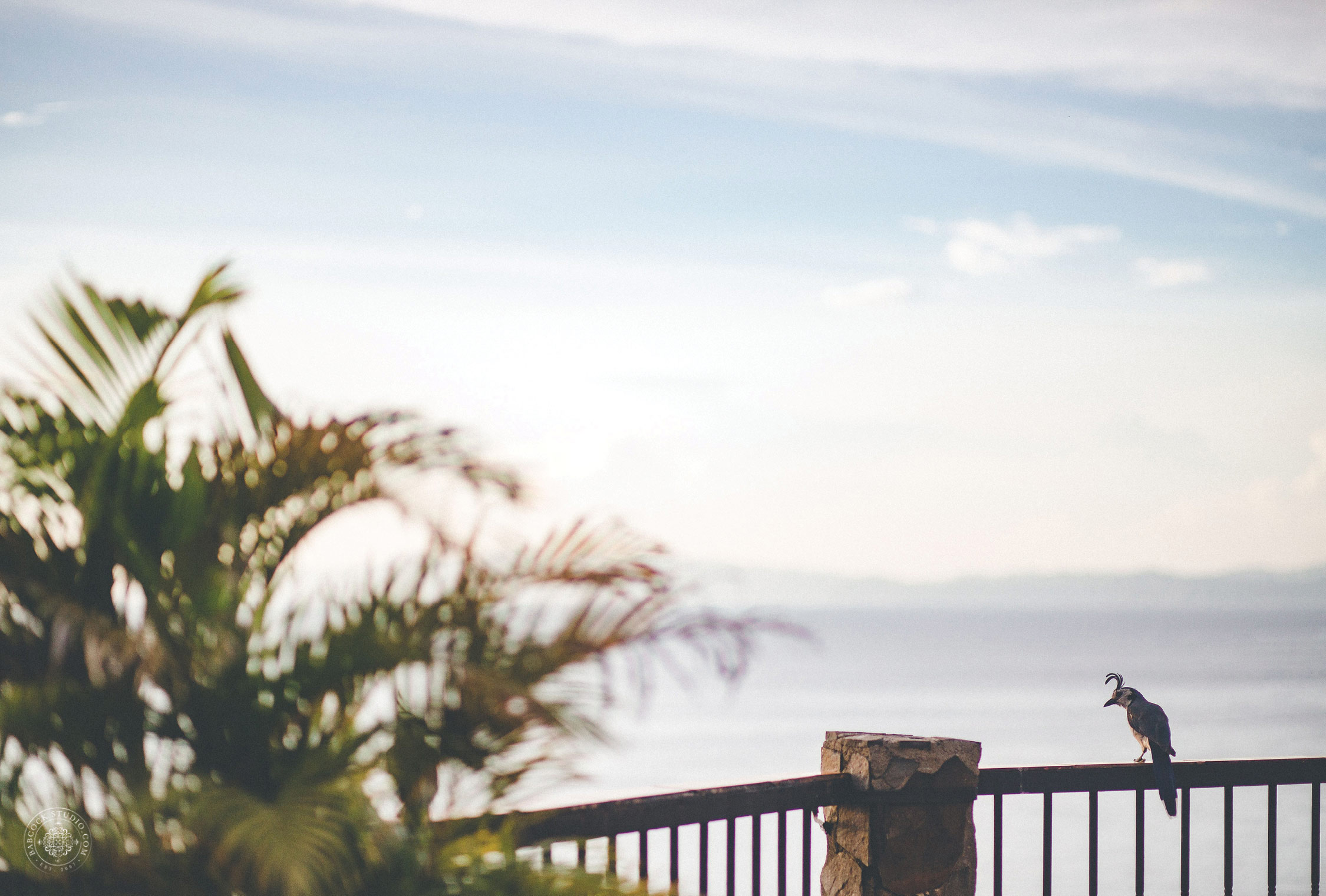 2cat-brandon-costa-rica-destination-wedding-photographer-dayton-ohio-2.jpg