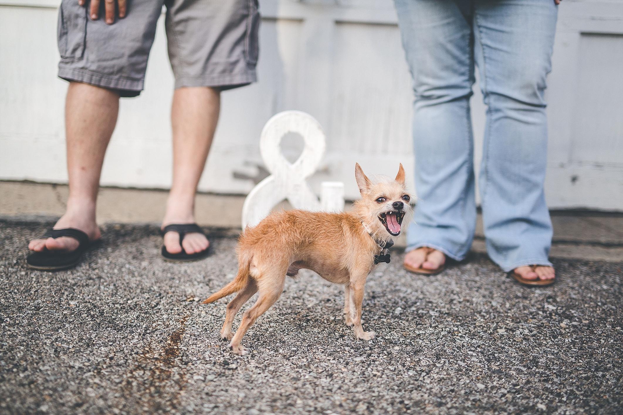 engagement-photographer--miamisburg-germantown-ohio-oregon_0064.jpg