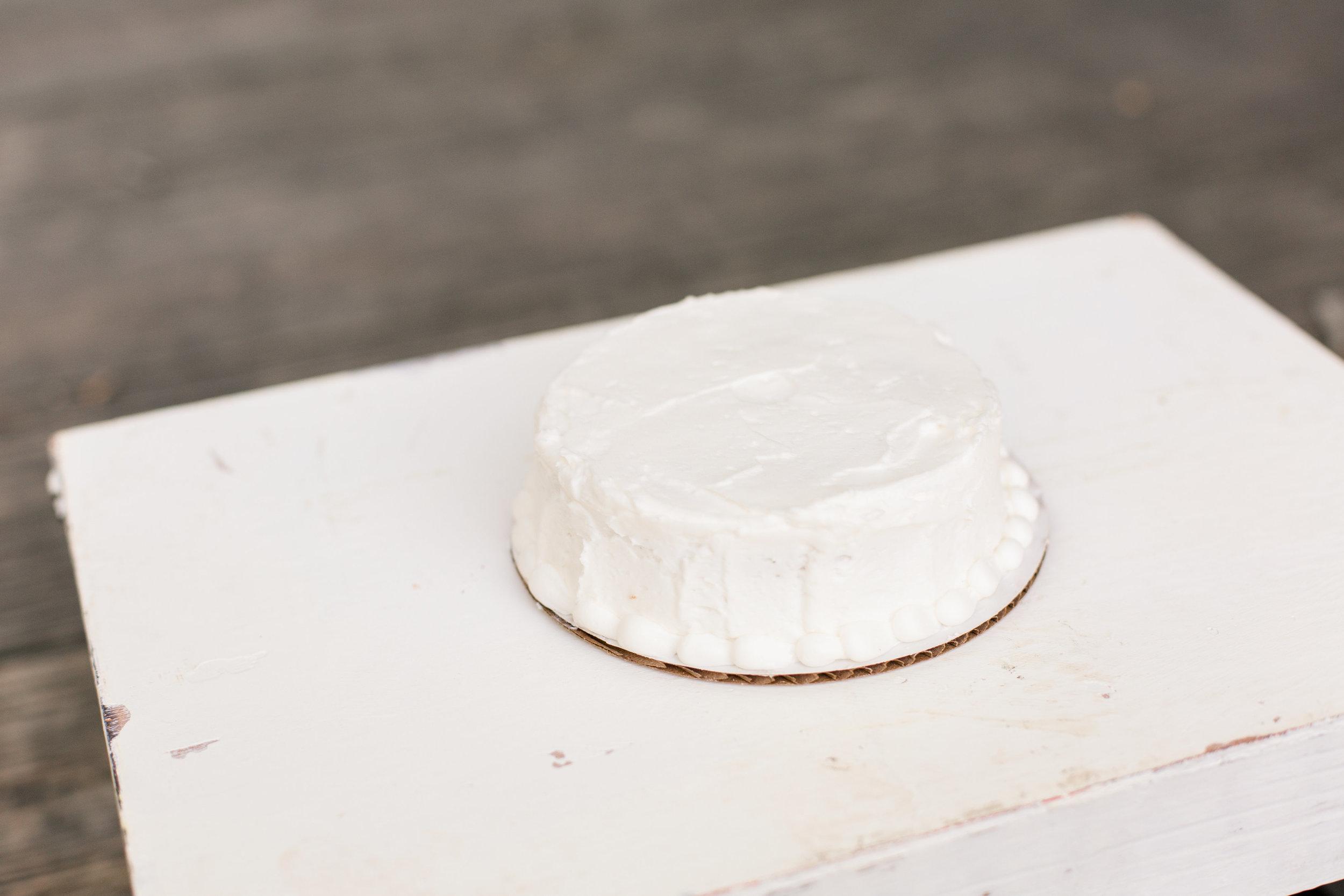 cake-smash-photo-session-columbus-ohio-sarah-cropper-photography.jpg