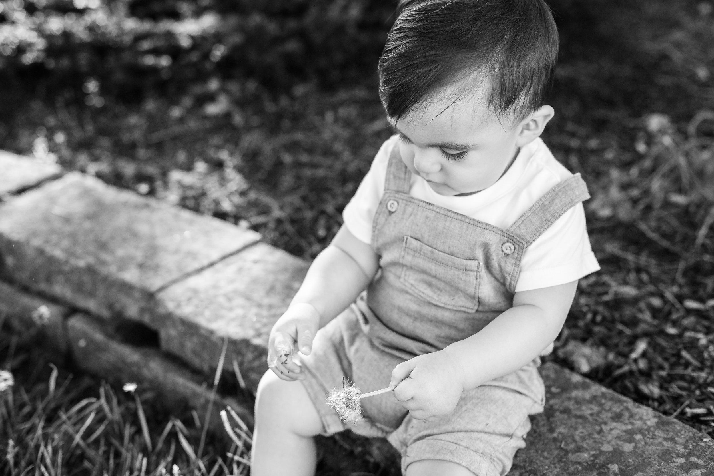 Bexley Ohio Baby Photographer
